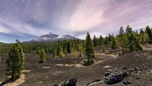 Larga exposición nocturna del Teide nevado en la corona forestal - Vicente R. Bosch