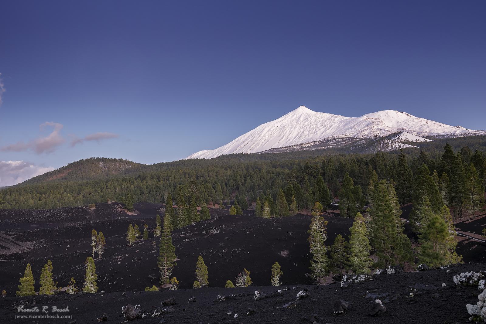 Teide nevado desde Arenas Negras