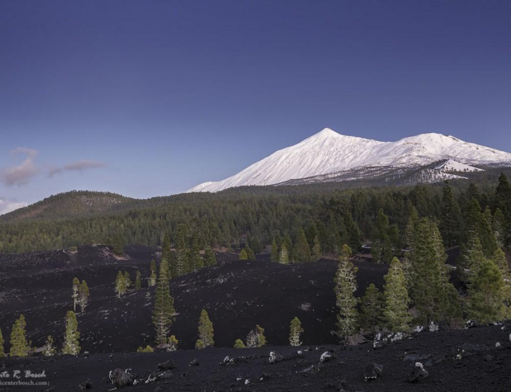 El Teide nevado desde Arenas Negras
