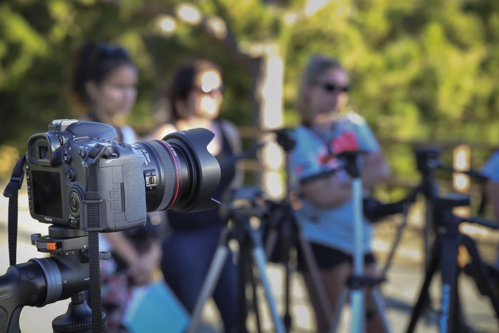 XII curso básico de fotografía en Tenerife 12