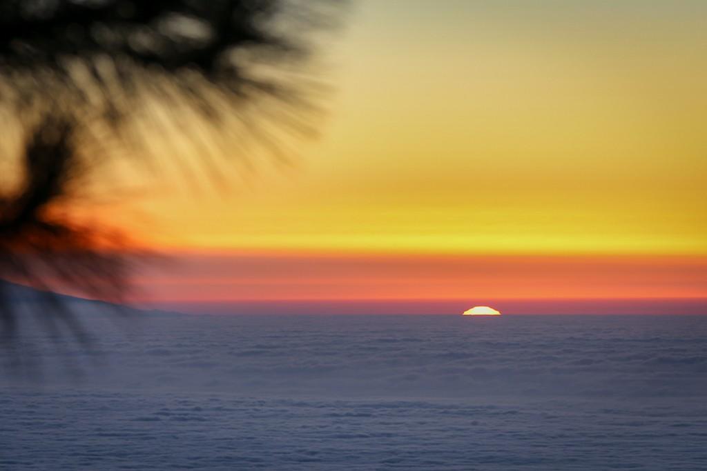 XII curso básico de fotografía en Tenerife 16