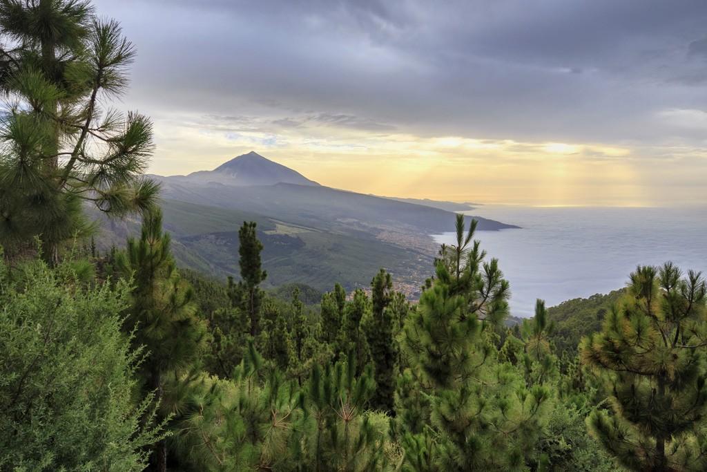 XIII curso de fotografía digital en Tenerife 11