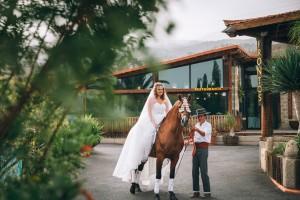 Novia y caballo