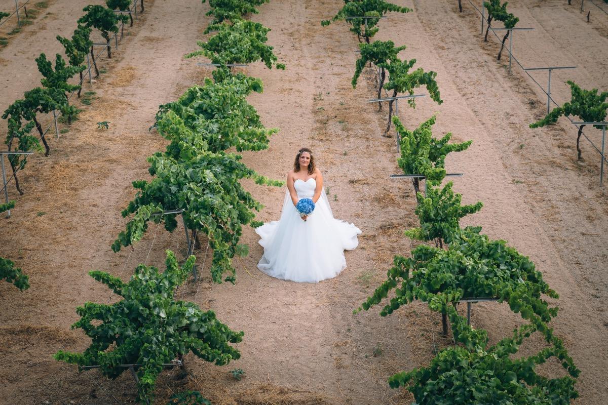 Novia en el viñedo